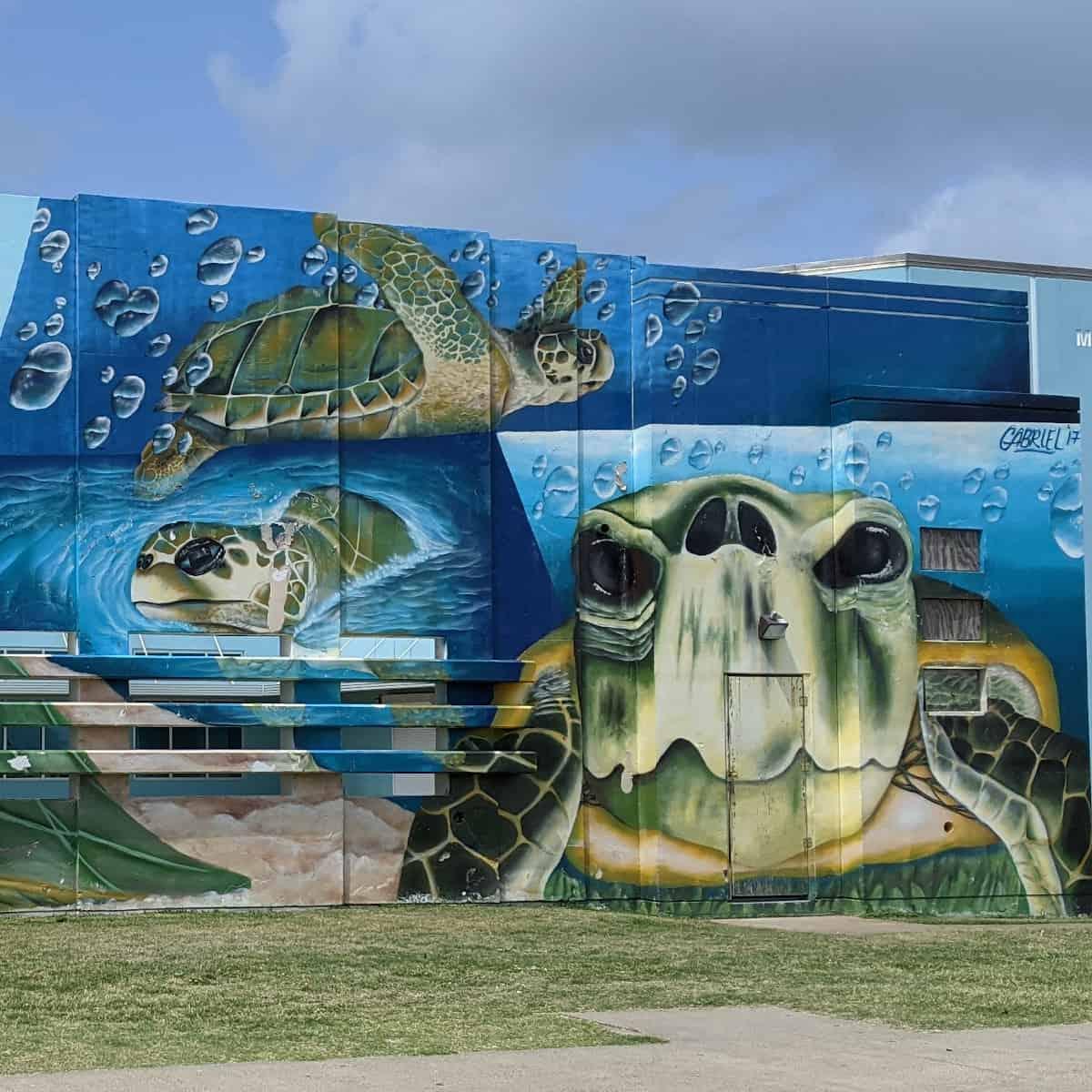 Sea Turtle Mural Galveston