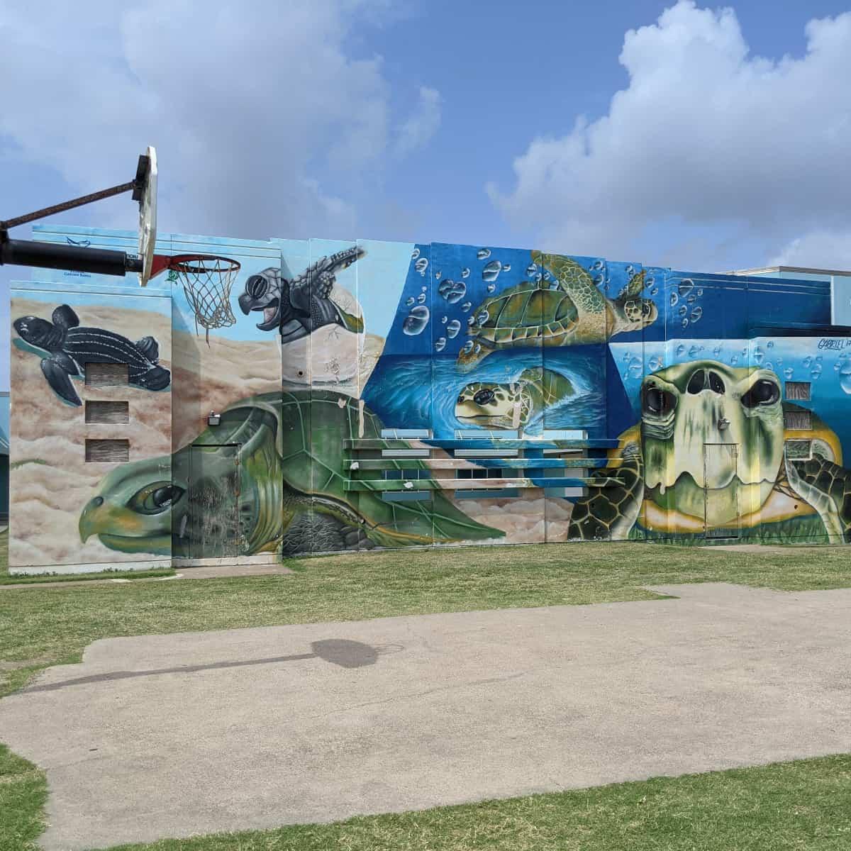 Menard Park Sea Turtle Mural