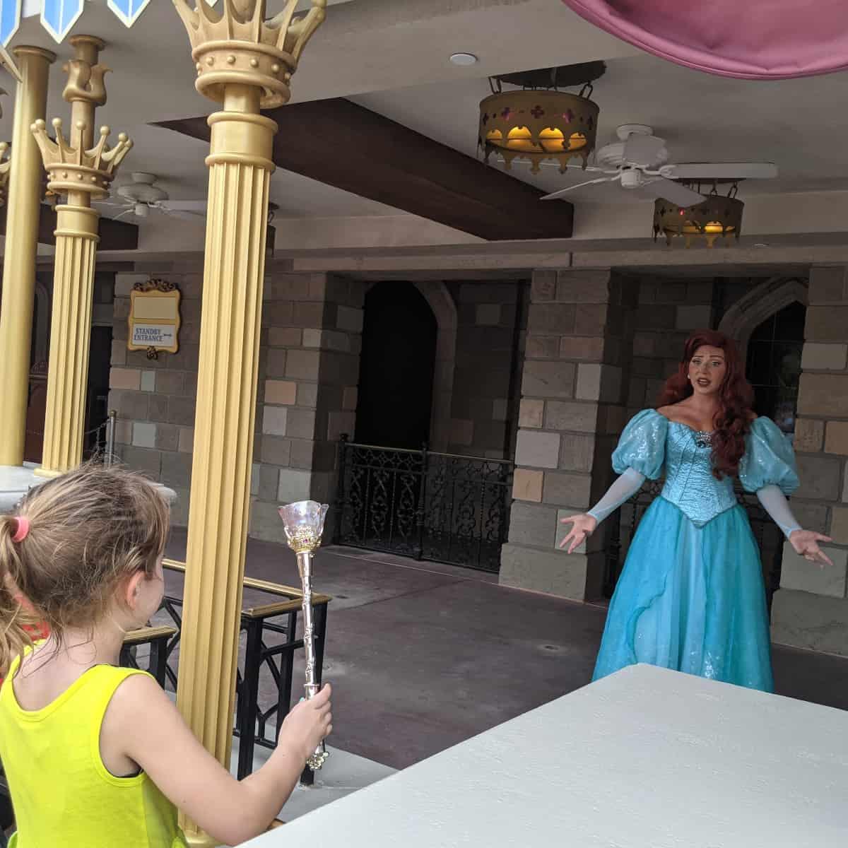 Aerial at Magic Kingdom Walt Disney World